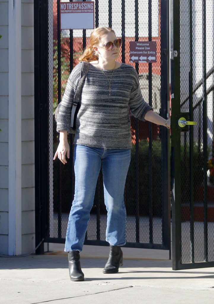 Amy Adams Visiting a friend in Beverly Hills 6 Photos