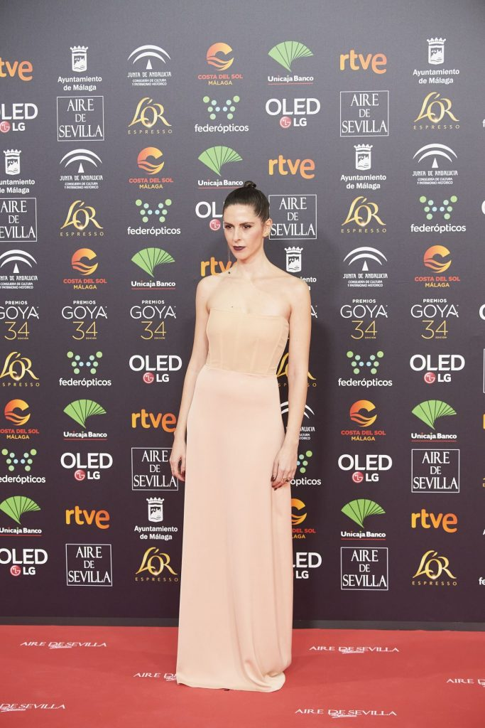Goya Cinema Awards 2020 in Madrid: Barbara Santacruz (7 Photos)