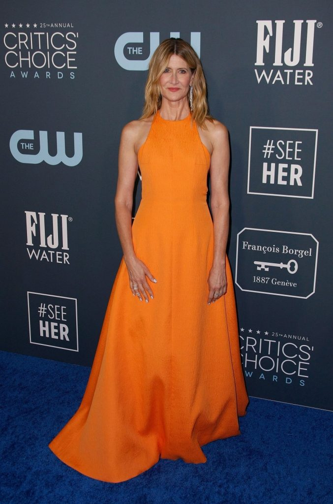 Critics' Choice Awards 2020: Laura Dern