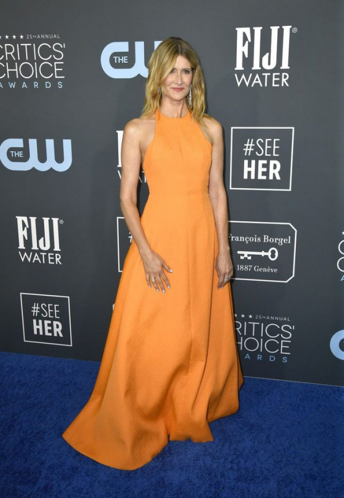 Critics' Choice Awards 2020: Laura Dern (14 Photos)