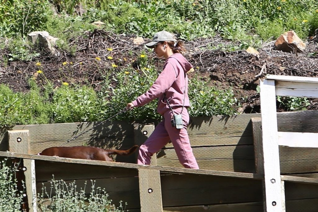 Alessandra Ambrosio – Hiking With Her Dog in Pacific Palisades 2020 (16 Photos)