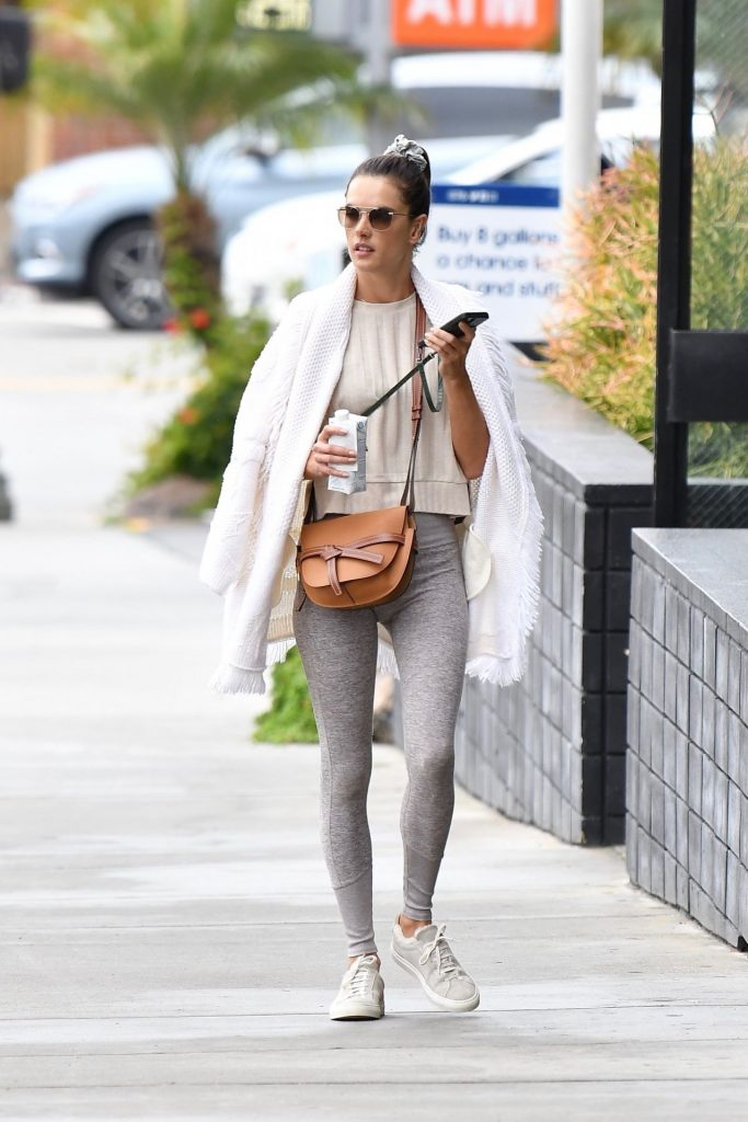Alessandra Ambrosio – Out in Brentwood 2020 (10 Photos)