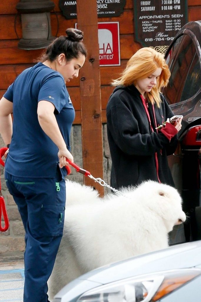 Ariel Winter – Takes her Dogs to the Veterinary 2020 (7 Photos)