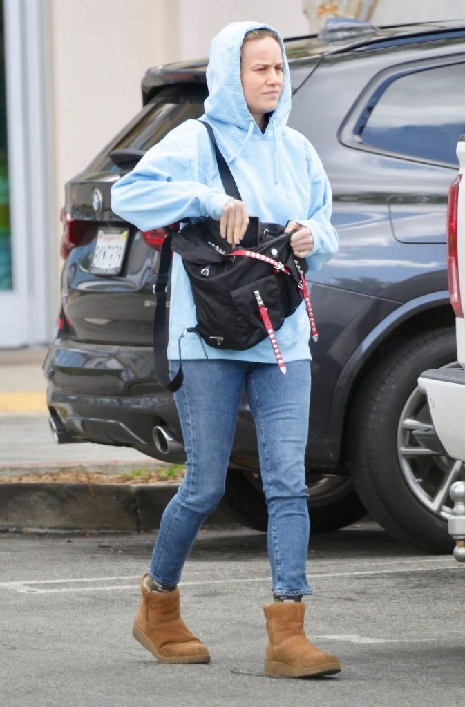 Brie Larson in Casual Outfit – Los Angeles 2020 (7 Photos)