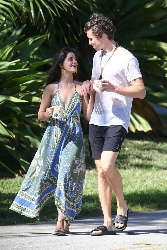 Camila Cabello and Shawn Mendes – Out in Miami 2020 (7 Photos)