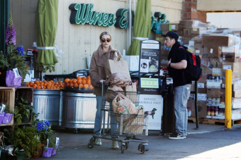 Emma Roberts Street Style – Leaving a Supermarket in Hollywood 2020 (10 Photos)
