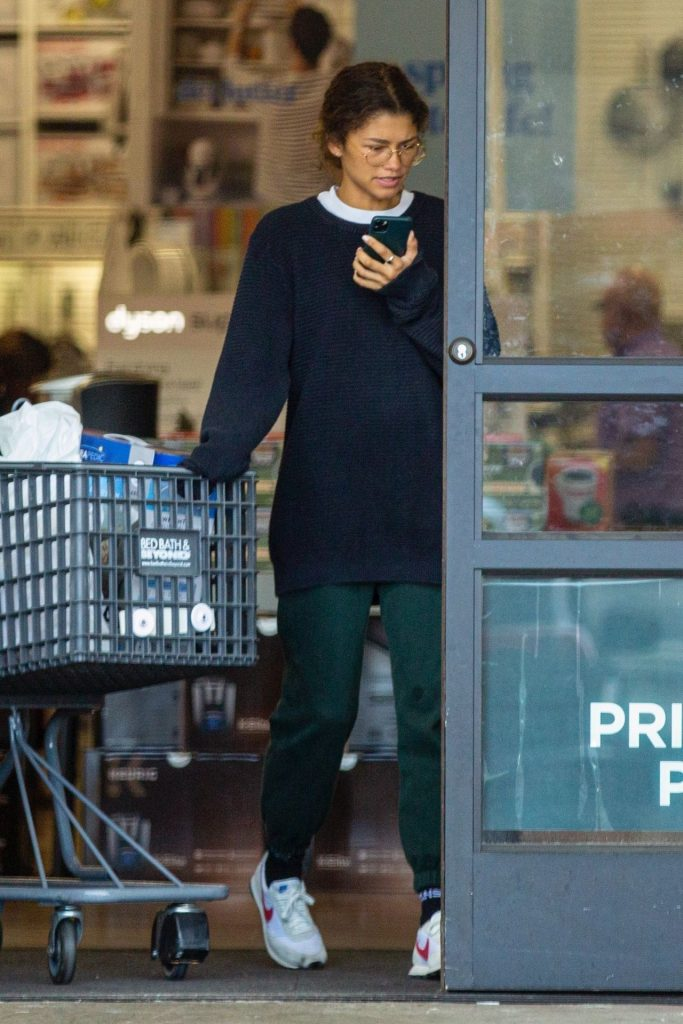 Zendaya – Shopping With Her Brother in LA 2020 (7 Photos)