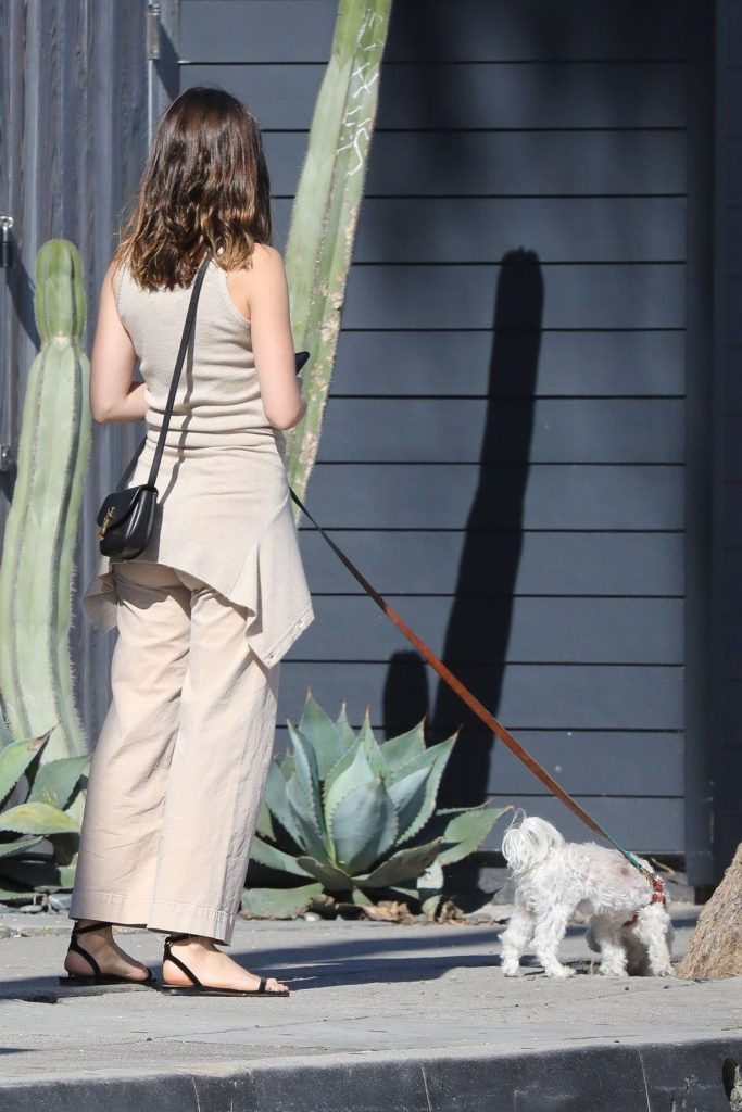 Ana De Armas Style – Walk With Her Dog 2020 (13 Photos)