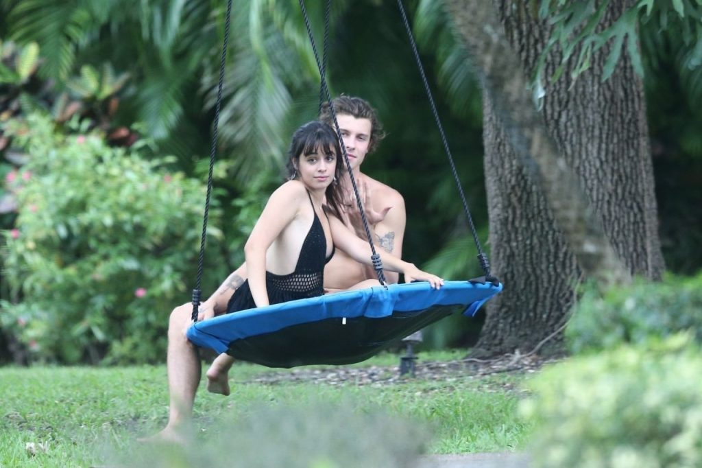 Camila Cabello and Shawn Mendes on a Swing 2020 (10 Photos)