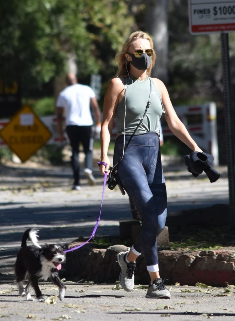 Malin Akerman – Taking Her Dog For a Walk at Griffith Park in LA 2020 (7 Photos)
