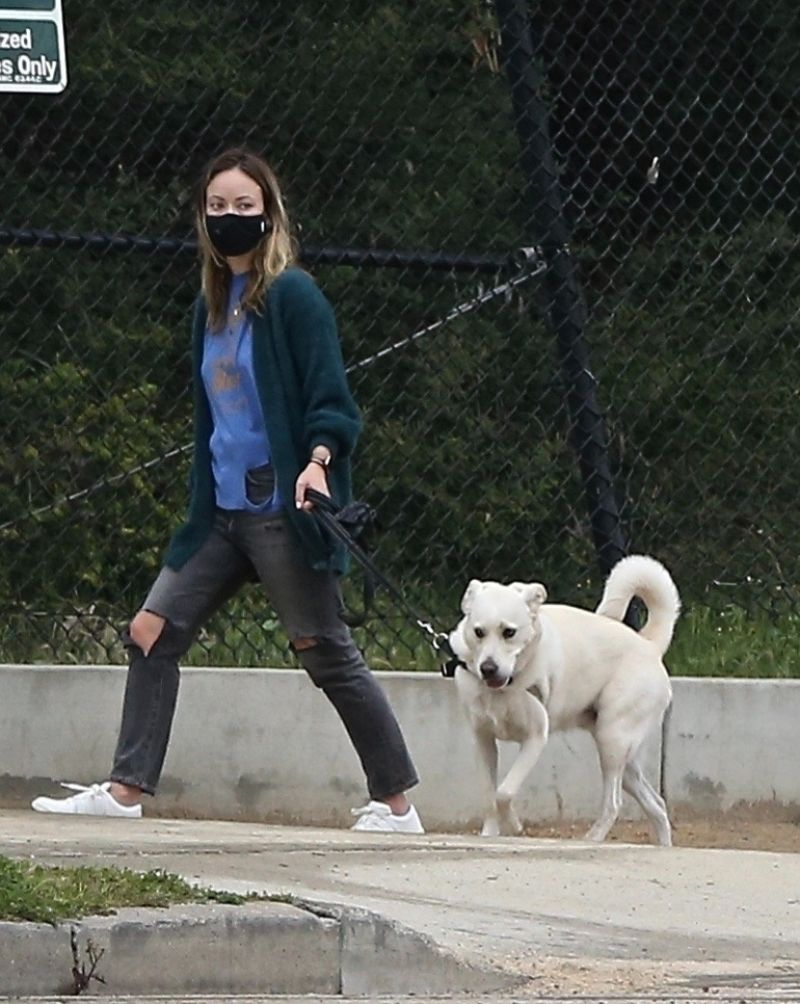 Olivia Wilde – Walking Her Dog in LA 2020 (6 Photos)