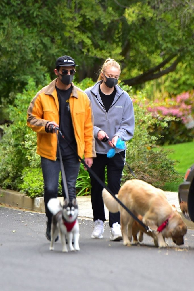 Sophie Turner – Take Her Dogs Out For a Walk in LA 2020 (4 Photos)
