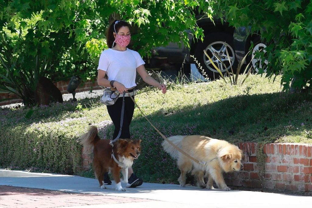 Aubrey Plaza – Takes Her Dogs for a Walk 2020 (10 Photos)