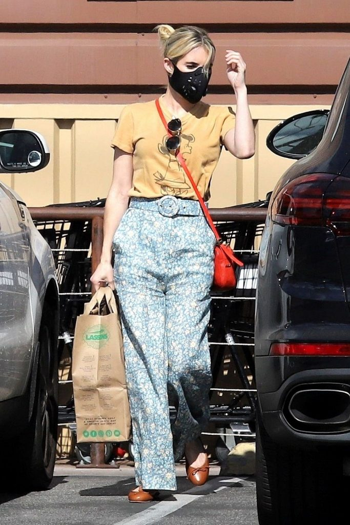 Emma Roberts – Grocery Shopping in LA 2020 (7 Photos)
