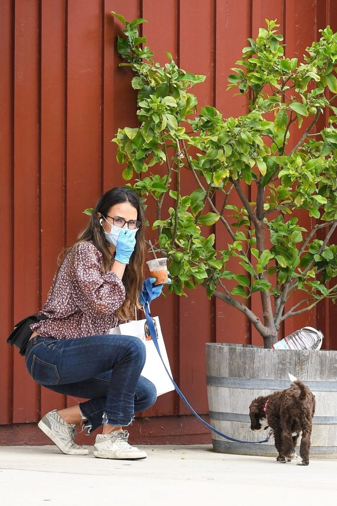 Jordana Brewster – Out in Brentwood 2020 (11 Photos)