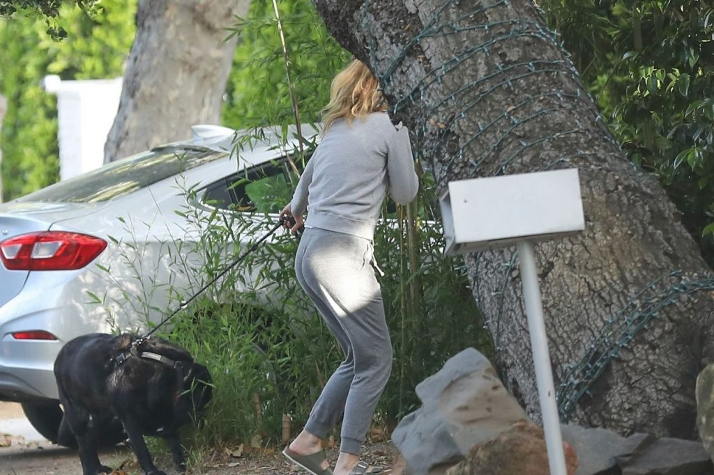 Laura Dern – Out in Pacific Palisades 2020 (7 Photos)