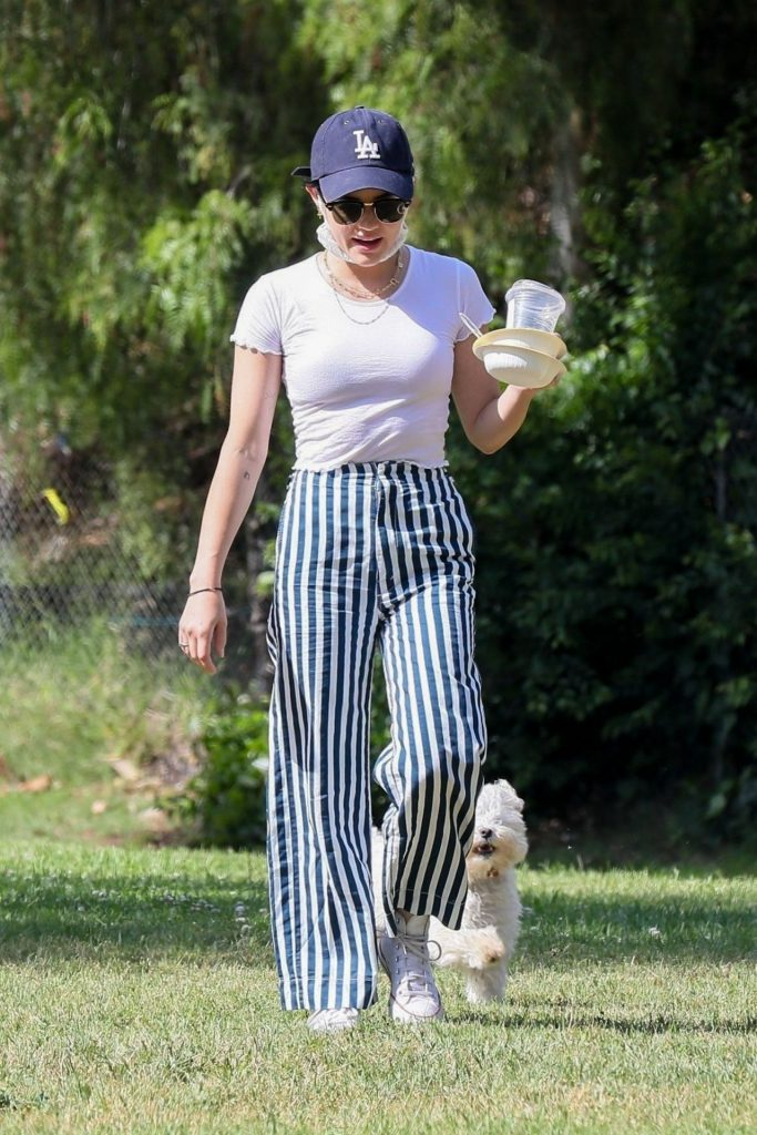 Lucy Hale in the Park in Los Angeles 2020 (9 Photos)