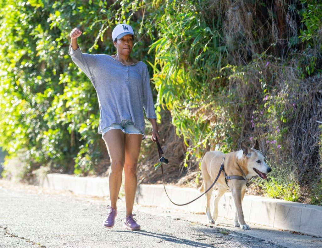 Regina King – Takes Her Dog Out for a Walk in LA 2020 (10+ Photos)