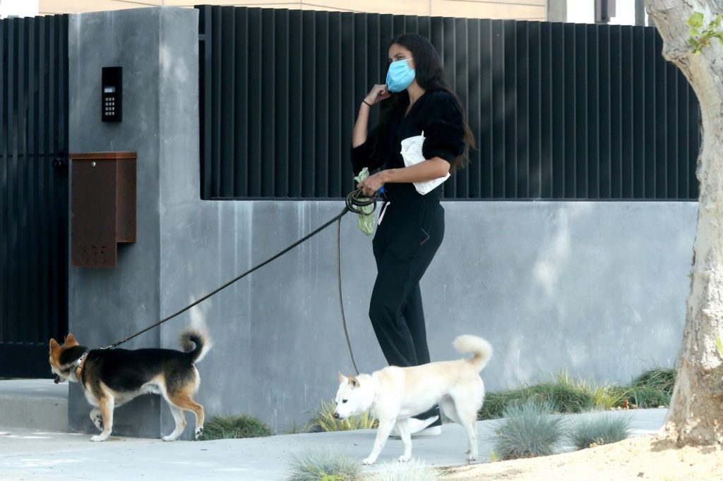 Sara Sampaio – Out to Walk Her Dogs – Los Angeles 2020 (7 Photos)