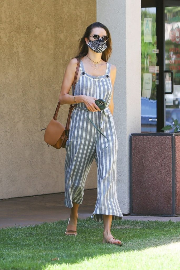 Alessandra Ambrosio Outfit 2020 (13 Photos)
