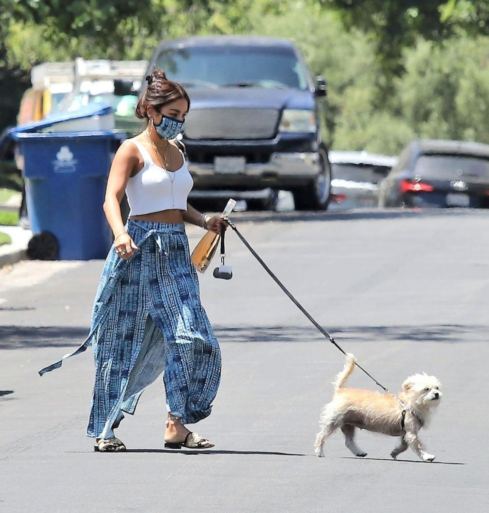 Vanessa Hudgens – Out in Los Angeles 2020 (7 Photos)